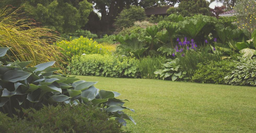 prepare Garden
