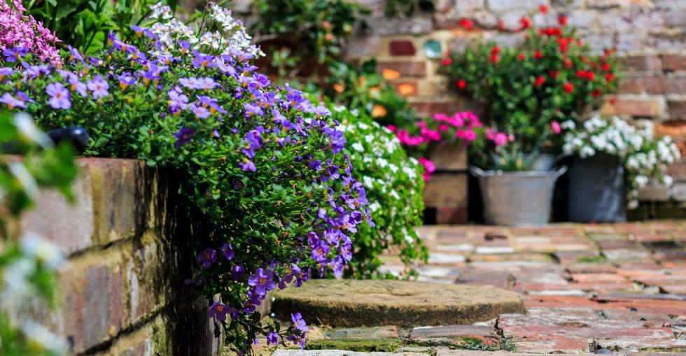 garden marketing