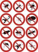 termite pest control - 3