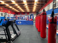 boxing gym business torquay - 2