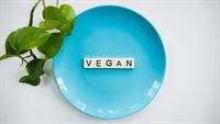 established vegan cafe bar - 1