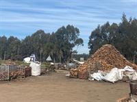 iconic firewood business established - 3