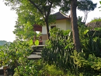 view on standard bungalow