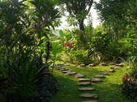 garden with view on standard bungalow