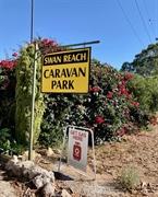 swan reach caravan park - 1