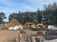 iconic firewood business established - 1