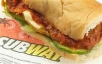 sub sandwiches franchise city - 2