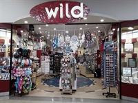 wild cards gifts franchise - 1