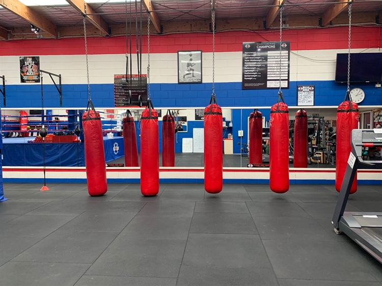 boxing gym business torquay - 4
