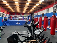 boxing gym business torquay - 1