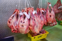 meat poultry retail wholesale - 1