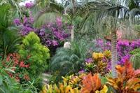 Breathtaking colorful gardens