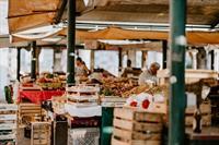 fruit vegetable wholesaler iconic - 3