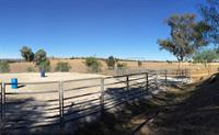 magnificent horse lifestyle property - 1