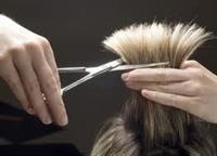 hairdresser barber business for - 2