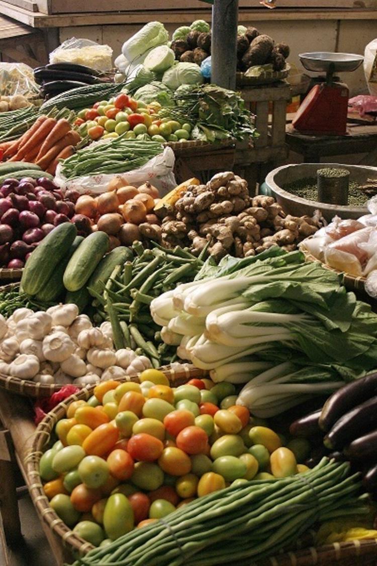 fruit vegetable wholesaler iconic - 5