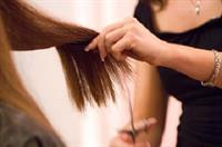 hairdresser bargain bargain - 1