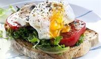 tullamarine sandwich bar great - 2