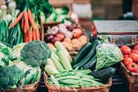 fruit vegetable wholesaler iconic - 2