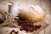 commercial artisan bakery for - 1