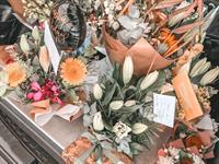 profitable cairns florist - 2