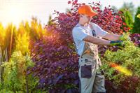 21082 profitable landscaping maintenance - 1