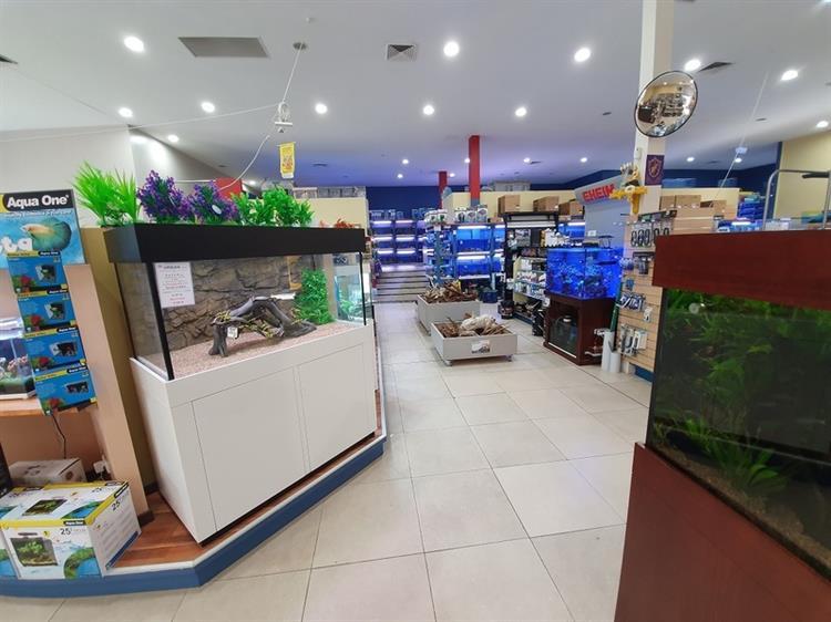 major iconic aquarium business - 4
