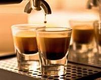 essendon coffee lounge easy - 2