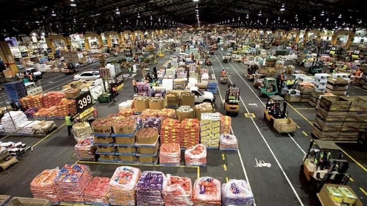 fruit vegetable wholesaler iconic - 4