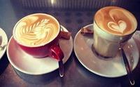 established cafe cbd fringe - 2