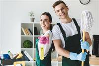 20190 domestic cleaning franchise - 1