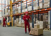 major importer wholesale distributor - 1