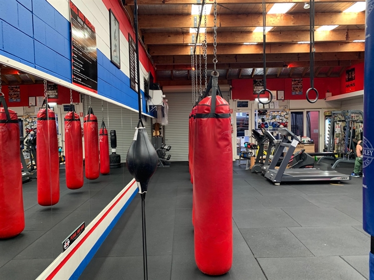 boxing gym business torquay - 7