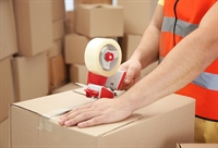 solid import wholesale business - 1