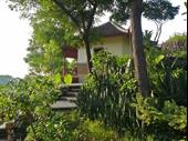 Lush Green Bungalow Resort With Big Land Plot For Sale