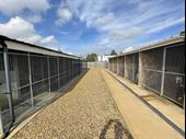 Luxury Kennels & Cattery With Professional Grooming Parlour For Sale
