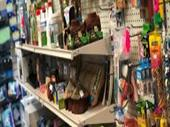 Pet Grooming In New York For Sale