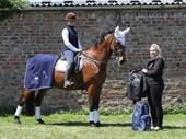 Equine Care Business In North Yorkshire For Sale