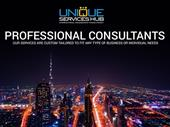Business Consultants In Ajman For Sale