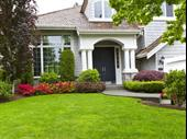 Landscaping Services For Sale