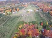 Apple Orchard Retail And Possible Hemp For Sale