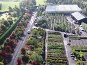Shropshire/Cheshire Borders - Nursery To Let For Sale
